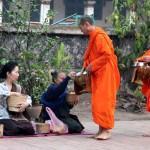 Luang Prabang, l'offrande traditionnelle du matin