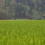 Trek à la rencontre des villages isolés : jour 3 suite et fin