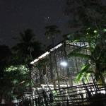 Parc de Phu Hin Bun - Road trip J2