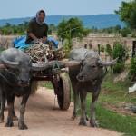 Etape à Battambang