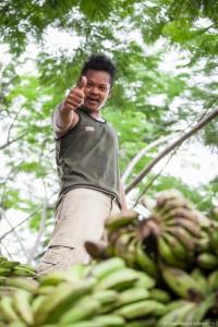 Le livreur de banane Jakarta, Java