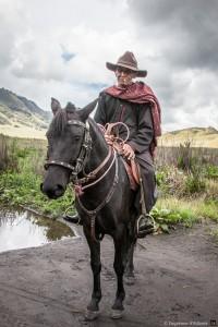 Le cowboy du Bromo